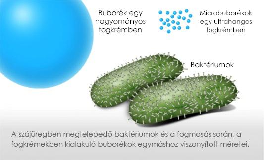 Hatékony fellépés a baktériumokkal szemben
