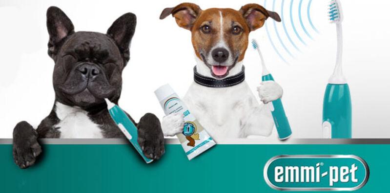 Emmi-pet ultrahangos fogkefe kutyáknak, cicáknak